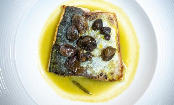 Unpiatto di Martina Caruso:Lampuga, straccetti di bufala, finocchietto di mare in conserva piastrato, capperi di Salina canditi, zuppetta di olive verdi e pomodoro