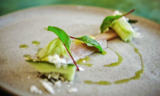 Sgombro e cetrioli: la ricetta estiva di Massim