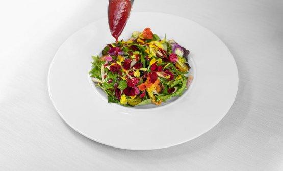 Insalatina con 30 tipi diversi di erbe e fiori ed estratto a freddo di pomodoro verde