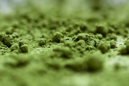 Polvere di tè verde Matcha, pilastro dell'antico rito kaiseki in Sol Levante masempre più diffuso nelle preparazioni dei cuochi d'Occidente (foto Flickr/diff sky)