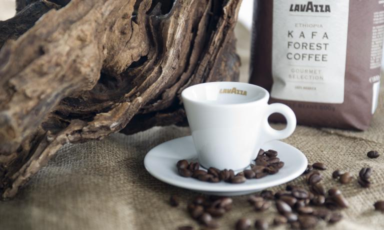 Kafa di Lavazza,�espresso che prende il nome dalla regione etiope in cui la qualit� arabica ha avuto origine (la parola caff� viene da qui). E' l'ultima novit� di un marchio attivo dal 1895, pronto per i grandi appuntamenti imminenti, dal Salone del Gusto a Expo 2015