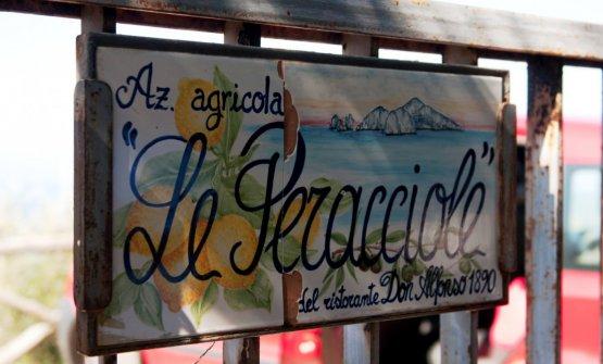 L'ingresso dell'azienda agricola biologica Le Peracciole, che gli Iaccarino hanno creato a Punta Campanella
