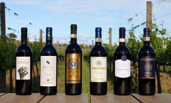 Le bottiglie che fanno parte del progetto Alliance Vinum
