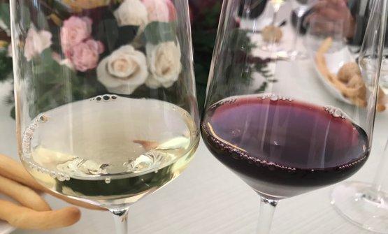 "Il curioso ""testa a testa"" tra Pinot Gris e Pinot Noir"