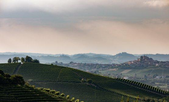 Le colline intorno a Grinzane Cavour