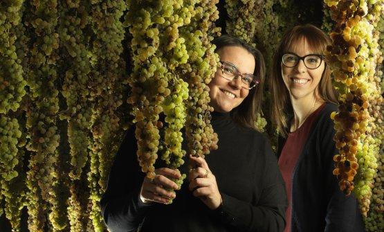 Angela e Maria Vittoria Maculan in mezzo ai grappoli