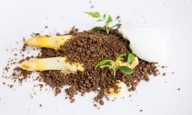Raccogliendo asparagi, ovveroAsparagi di Bassano