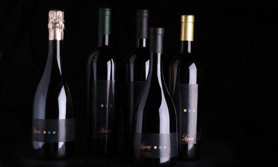 Varie tipologie di vino
