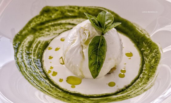 Burrata ripiena di sorbetto al pomodoro su crema di basilico, polvere di caffè e olio extravergine d'oliva