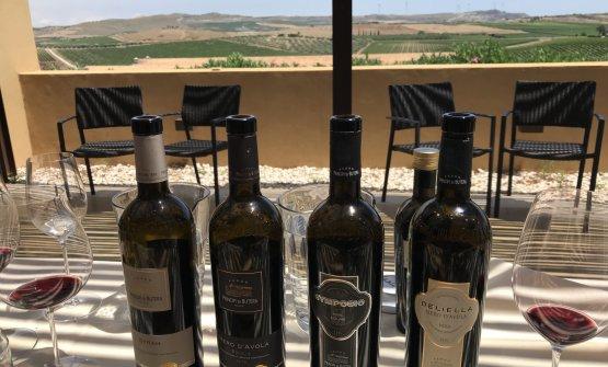 Alcuni dei vini degustati