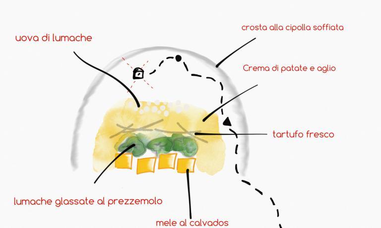 Come se fosse la mappa che serve per trovare il tesoro, ecco un disegno che spiega il piatto che Franco Aliberti ci presenta nella serie di 5 che dedichiamo alle lumache
