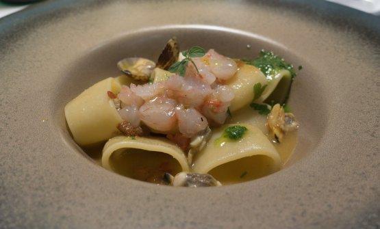 Calamarata con vongole, ricci, gamberi e crema di rucola