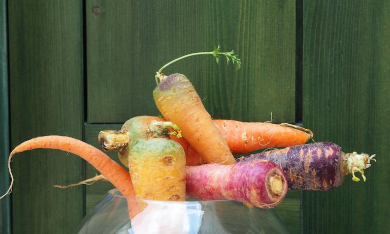 Gli incredibili colori delle carote di Polignano