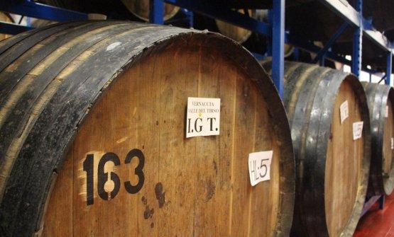 Viaggio nel mondo dell'azienda Silvio Carta, dalla Vernaccia di Oristano ai distillati