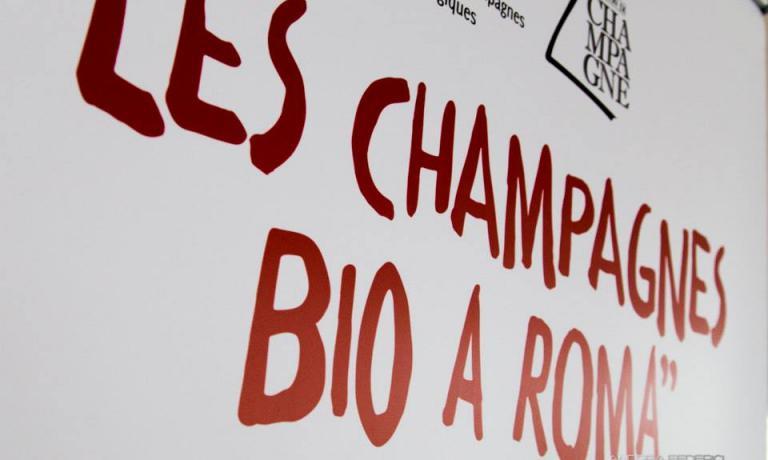 Si � svolta nei giorni scorsi a Roma la manifestazione chiamata Le Champagne Bio, dedicata alla declinazione biologica e biodinamica del grande vino francese. L'associazione che raccoglie i vignaioli dello Champagne Bio conta oggi 22 iscritti, ma anche una grande casa come la�Rœderer ha recentemente iniziato la conversione di alcuni vigneti (foto Andrea Federici)