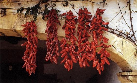 Se la bizkaina è la salsa che più caratterizza la tradizione culinaria basca, i pimientos choriceros ne sono un ingrediente fondamentale