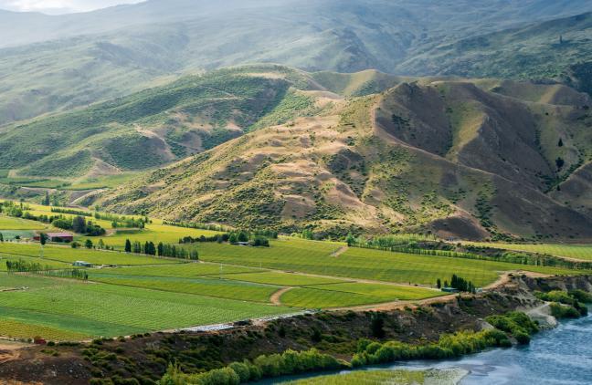 La regione vitata dellaWairau Valley, nel Marlborough, all'estrema punta nord dell'isola a sud di Nuova Zelanda. E' il quartier generaledi Cloudy Bay,tre quarti di produzioneSauvignon Blanc, 10 Pinot Nero. La cantina è figlia di un'intuizione diDavid Hohnen. Primo vino prodotto:1985