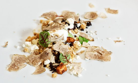 Croccante di nocciole su gelatina con ricotta di pecora e tartufo bianco d'Alba