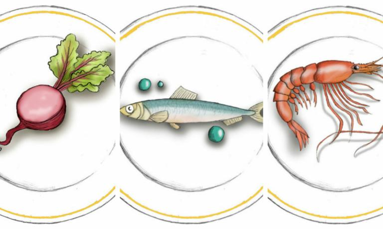 Gioco grafico dal sito del ristorante del Mudec