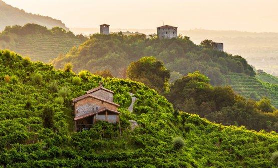 Paesaggi mozzafiato e colline scoscese: siamo nella zona di Col San Martino, con le torri di Credazzo