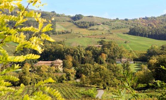 Villa Fornace e i vigneti di Conte Vistarino