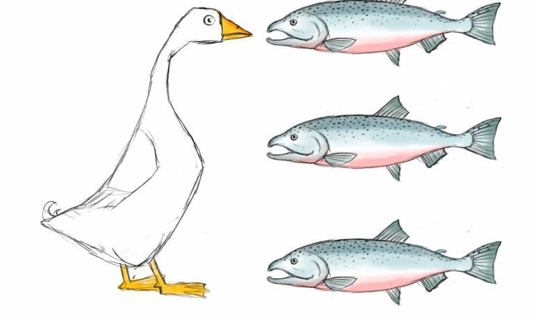 Gianluca Biscalchin trasforma in disegno la creatività di Carlo Cracco e Matteo Baronetto: un salmone marinato senza il classico ricciolo di burro finale, ma con il foie gras. Il piatto è stato presentato a Identità Milano 2012. Qui l'intero procedimento.