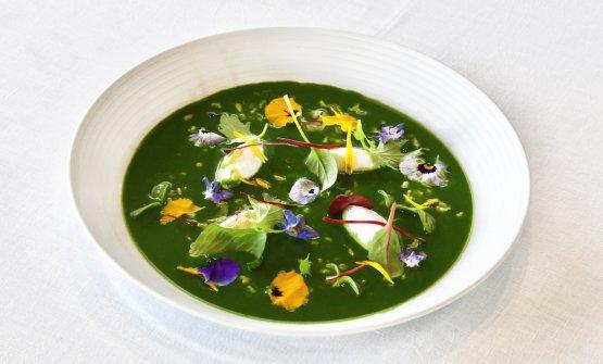 Crema di erbe selvatiche con avena, ricotta di pecora e fiori