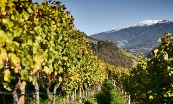 La Valle Isarco è una delle due valli principali