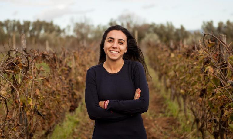 Tutto iniziò in ContradaFossa di Lupo, vicino a Vittoria, in provincia di Ragusa.In un ettaro di terreno che da unlato si appoggia a una strada: l'SP68. Oggi quella strada provinciale dà il nome a due dei vini dell'azienda agricola di Arianna Occhipinti
