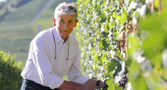 Domenico Clerico, azienda omonima a Monforte d'Alba, Cuneo (1950-2017)