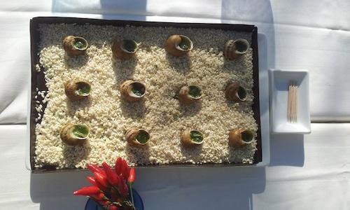 Zen garden with snails on the beach, a dish create