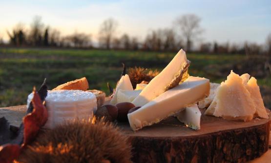 L'Agribar di Cascina Guzzafame propone degustazioni dei fantastici prodotti maison