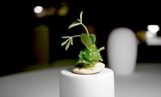 Crackers di pasta matta, alga wakame, germoglio di luppolo. L'appetizer che ci ha convinto di più