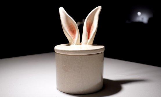 Orecchie di coniglio?