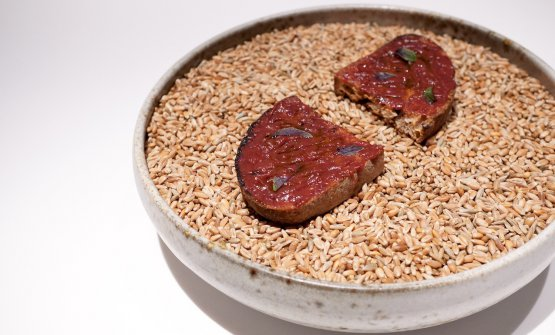 "Rye bread bruschetta with sauce of ""mountain tomato"" (that is to say a reduction of fermented plums)"