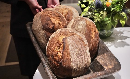 The bread is made with a mix of flour – corn, wheat, rye – by a cooperative in Gries that helps disabled children. Two steps of leavening: the first, at daytime and at room temperature, the second at night, at 3-4°C. It has very little gluten...