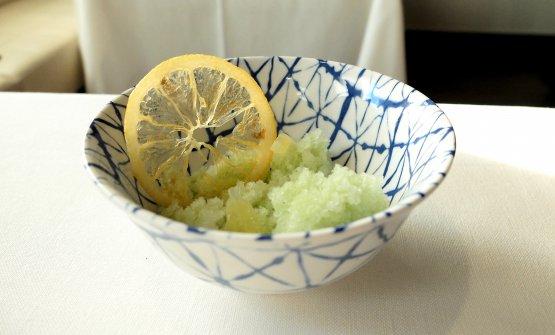 Granita di limone e alloro con limone candito