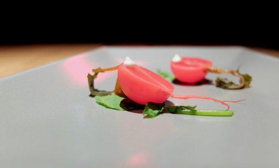 Rapanello allo yuzucon crema di pinoli