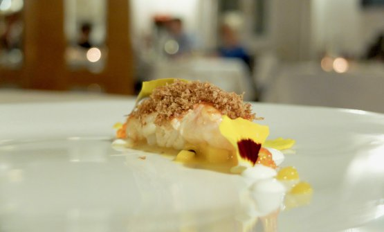 Fantastic Scampi, bottarga of lamb heart, trout roe and mango