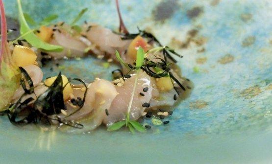 Leonforte: ricciola di lenza leggermente marinata con germogli freschi, servita con Bellini di pesca gialla di leonforte e zenzero. Il pesce del VotaVota viene da tre importanti mercati siciliani, quelli di Donnalucata, Aci Trezza e Scoglitti