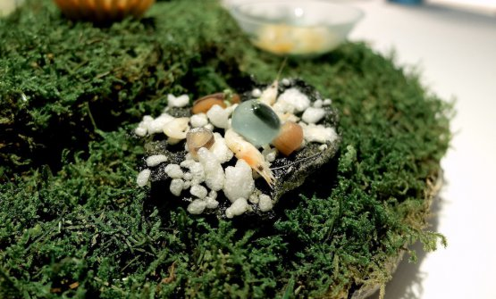 Croccante di alghe con gamberetti