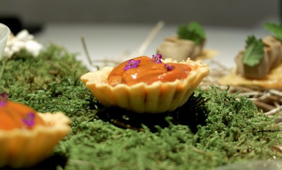 Tart with sea urchins