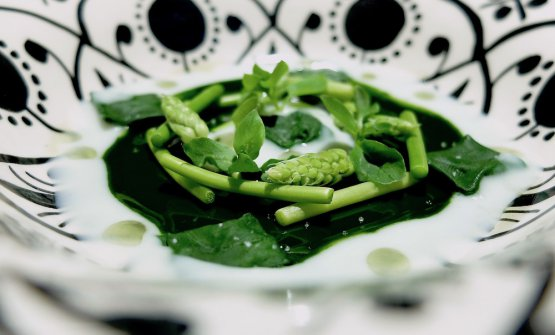 Spinach, asparagus, cheese from sheep's milk and oil of rosemary: an extraordinary dish, with persistent vegetal notes of chlorophyll, a great texture, huge elegance and pure flavours