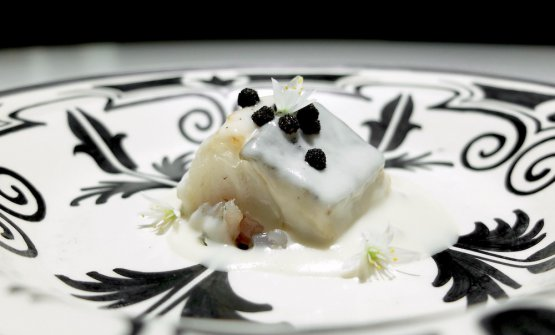 Seabass belly from the estuary of the Guadalquivir with its tartare and an emulsion of its head