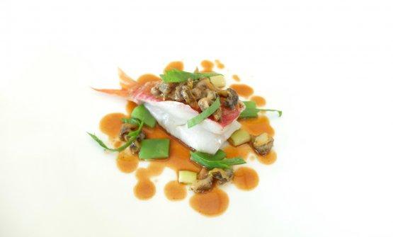 Triglia di scoglio, salsa di triglia al curry, lumache di mare, fagiolini stortini, taccole e insalatina di acetosa