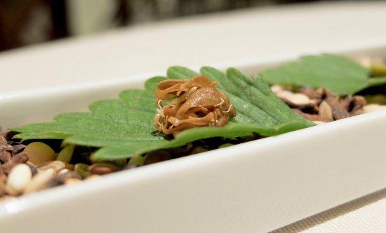 Il nuovo menu degustazione del Tantris parte conCapperi e Campari, tre microassaggi per resettare il palato. Qui un cappero croccante...
