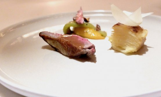 Petto di piccione, il suo filetto, millefoglie di patate, cipollotto, cipolla, insalatina di peperoni al forno a legna