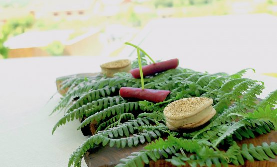 Pickled beetroot and leaf of nasturtium; thenChampignon sandwich