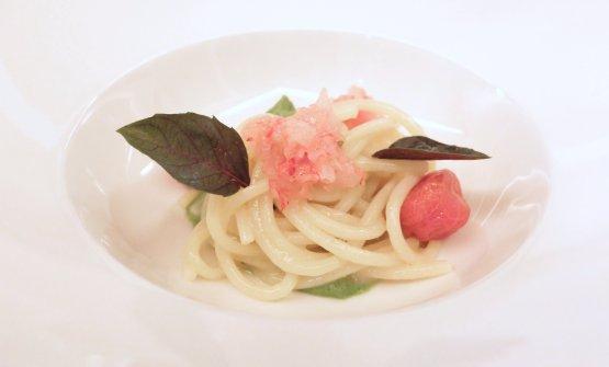 Spaghetti Benedetto Cavalieri, crema di zucchine, tartare di gamberi rossi, pomodoro confit