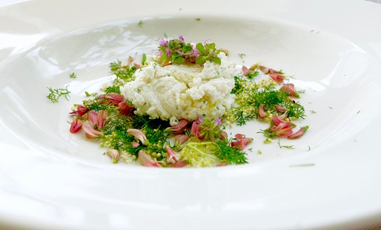 Ricotta, fiori ed erbe. Lefoto dei piatti sono di Tanio Liotta
